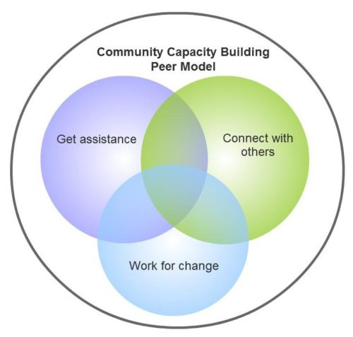 Community Capacity Building Peer Model Diagram